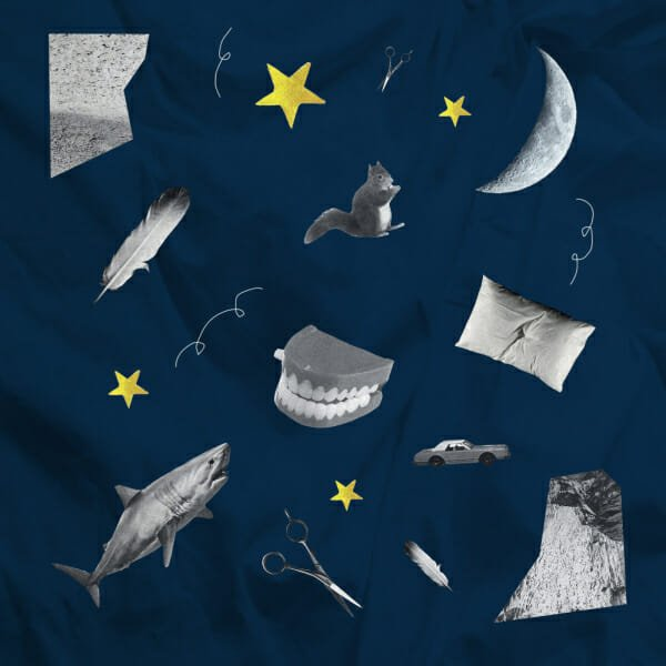 moon chatter teeth shark squirrel pillow dreams feather stars