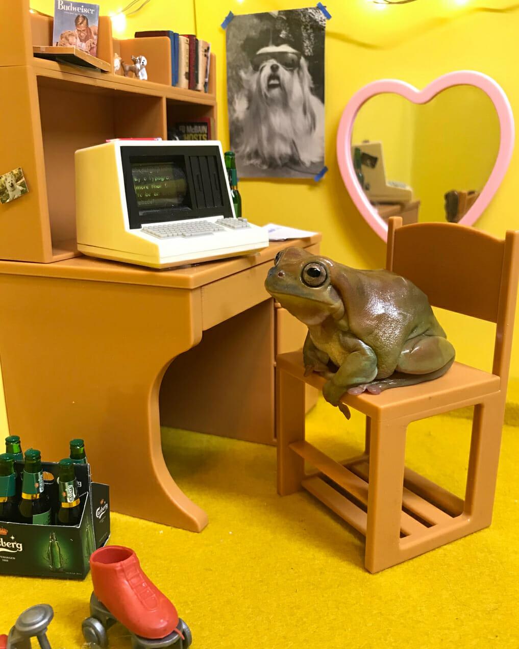 aleia murawksi instagram frog man repeller