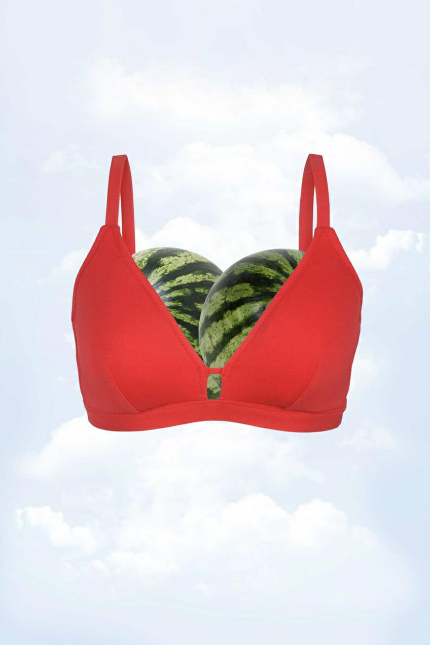 bikini and watermelons